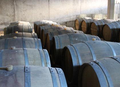 Barriques de vieillissement de Fine Bordeaux